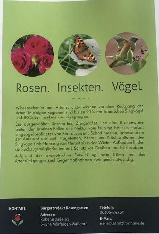 Ratgeber: Rosen, Stauden, Kleingärten