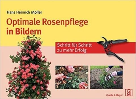 Buch Optimale Rosenpflege in Bildern