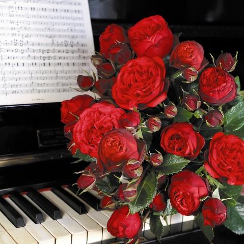 Piano®
