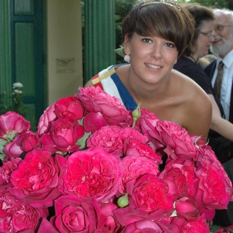Offer: Classic HT Frangrant Roses